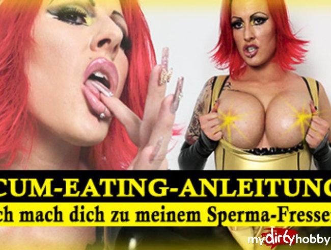 Cum-Eating-Anleitung! Ich mach dich zum Spermafresser!